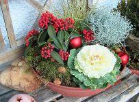 Advent und Winter_17